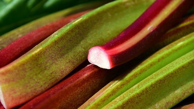 rhubarb-2280153_640