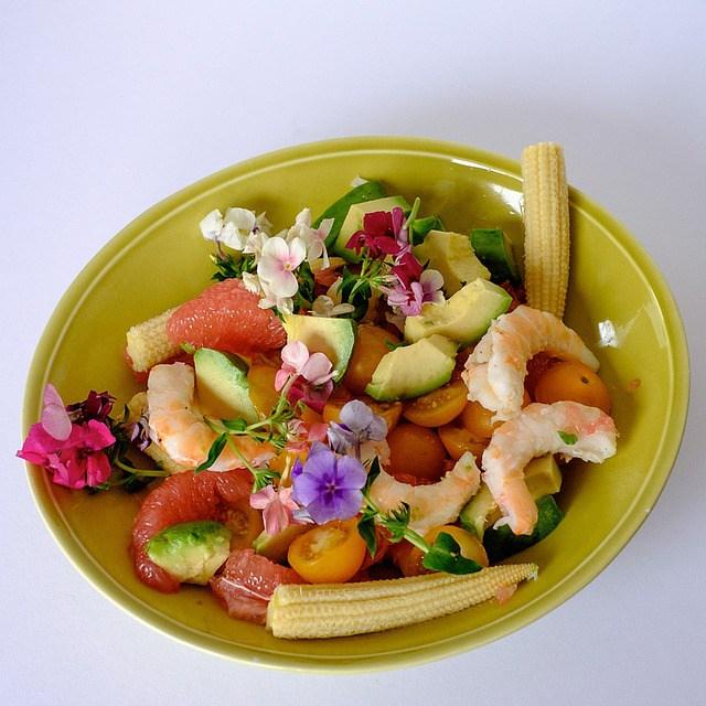 salade-bio-local-paimpol-côtes d'Armor