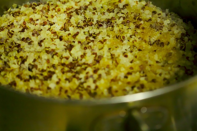 Atelier Bio-cuisson quinoa-astuces recette de cuisine-Côtes d'Armor