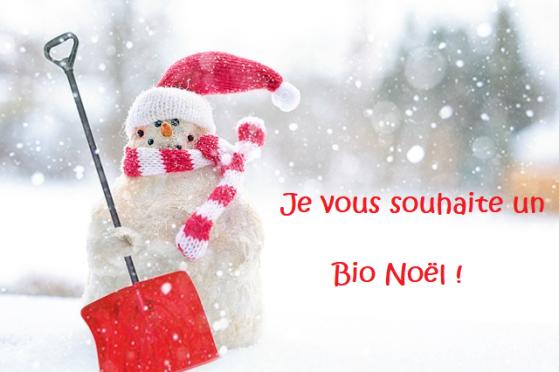 Joyeux Noël Bio en Bretagne