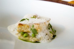 le sarrasin malin-C Très Bio- Cours de cuisine santé - Côtes d'Armor-Bretagne