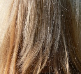 cheveux blonds.jpg