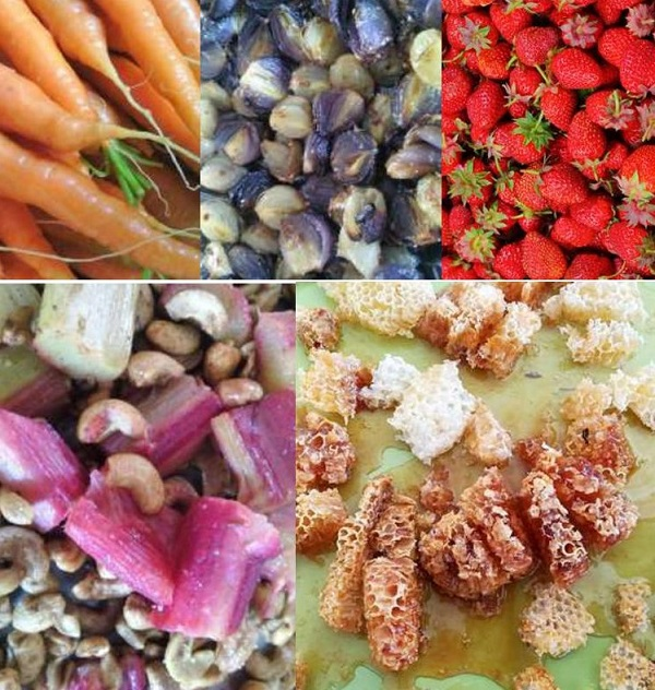 C Très Bio- Cours de cuisine santé - Atelier culinaire-Côtes d'Armor-Bretagne - Bord de mer