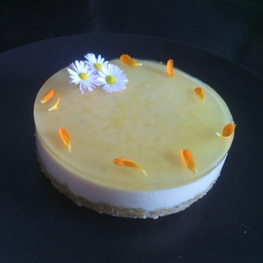 cheesecake citron verveine