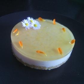 Noël - Cours de cuisine - atelier de cuisine - Paimpol- Côtes d'Armor - Bretagne- Santé - Bio- desserts - gâteau biocoop - C Très Bio - bord de mer - sapin