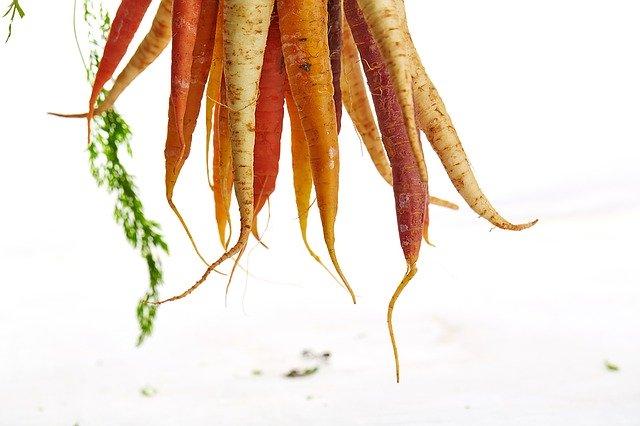 carottes2.jpeg