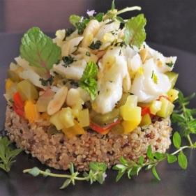 Traiteur - bio - Paimpol - Côtes d'Armor - Bretagne - réception - anniversaire - mariage - champêtre -Bord de mer - vegan - sans gluten - végétarien