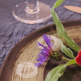 Repas - traiteur - Bio - Paimpol- Côtes d'Armor - Bretagne