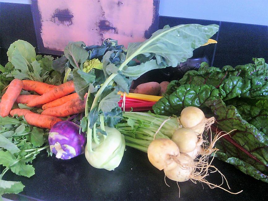 légumespotager coat raden (2)