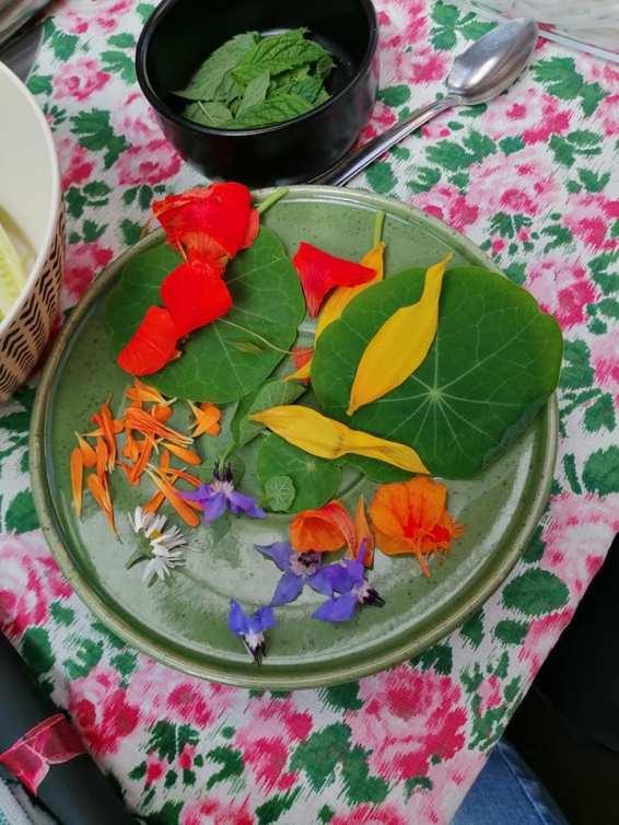 assortiment fleurs
